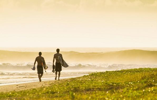 Picture waves, grass, beach, sea, ocean, seascape, sand, sunrise, surf, seaside, horizon, surfers