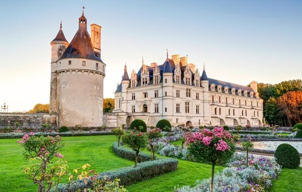 Picture Park, castle, garden, Palace, vintage, lawn, castle