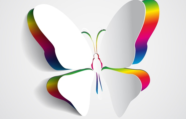 Picture color, background, butterfly, wings