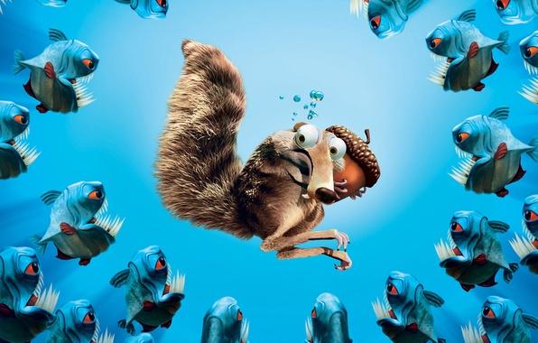 Picture fish, walnut, protein, ice age, under water, piranhas, ice age