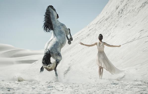 Picture sand, girl, horse, desert, whip