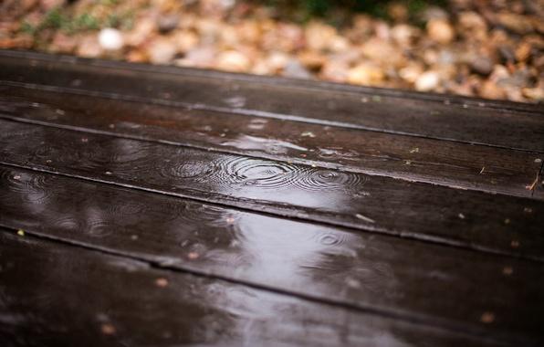 Picture autumn, leaves, drops, rain, Board, blur, wooden