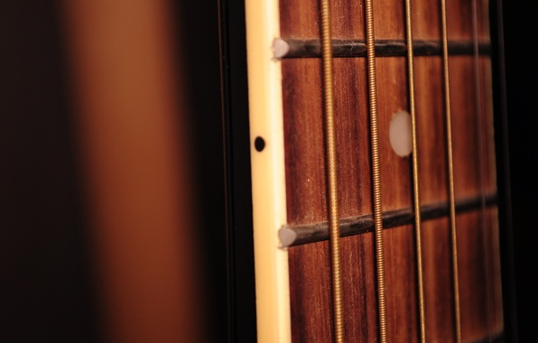 Picture macro, music, guitar, strings, Grif