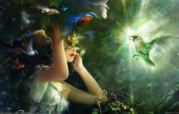 Picture girl, light, Birds, mask, diamond, Bing Xiao