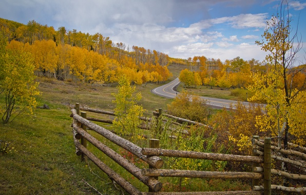 Picture road, autumn, the sky, trees, the fence, slope