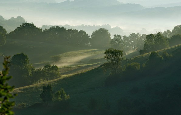 Picture the sky, grass, trees, mountains, fog, hills, morning