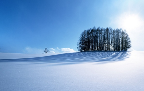 Picture road, sky, trees, blue, winter, mountain, snow, sun