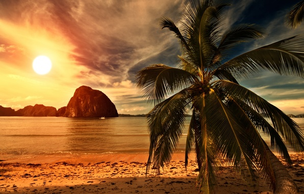 Picture sand, sea, beach, the sky, the sun, clouds, landscape, sunset, nature, tropical beach, palm trees, …