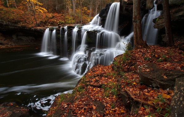 Picture autumn, forest, leaves, river, waterfall, cascade, West Virginia, West Virginia, Brush Creek Falls
