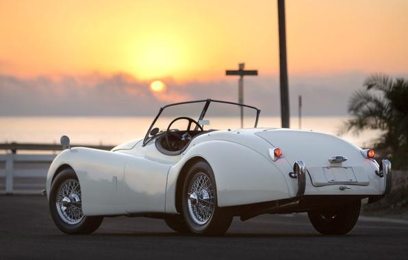 Picture Roadster, Jaguar, Jaguar, 1949, XK120