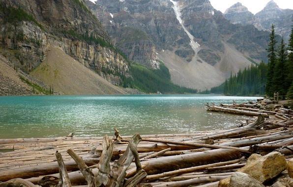 Picture forest, mountains, river, rocks, crossing, logs, cutting