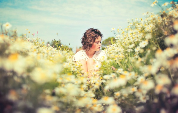 Picture field, summer, girl, the sun, mood, chamomile