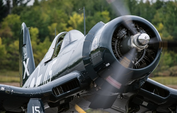 """Picture fighter, Corsair, F4U, """"Le Corsaire"""""""