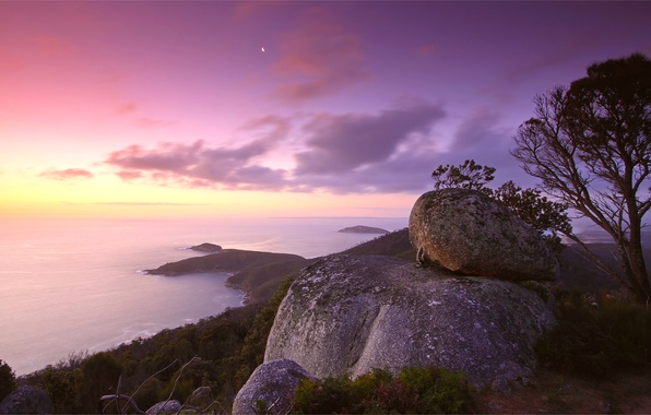 Picture the sky, clouds, sunset, stones, tree, lilac, pink, shore, calm, Sea, the evening, hill, calm