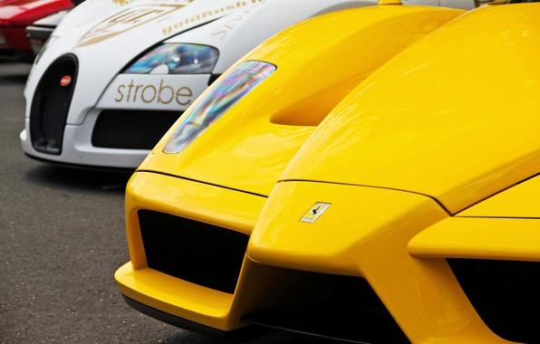Picture white, yellow, veyron, Ferrari, bugatti, white, Ferrari, Bugatti, enzo, yellow, supercars, supercars
