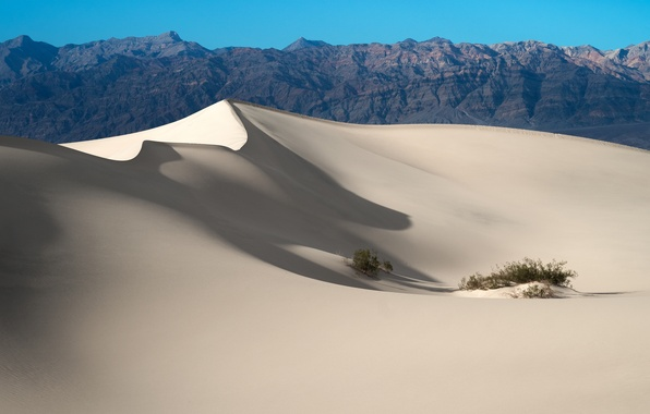 Picture sand, desert, dunes, USA, California, Death Valley National Park