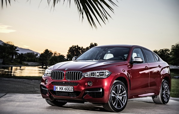 Picture BMW, cherry, car, F16, 2014