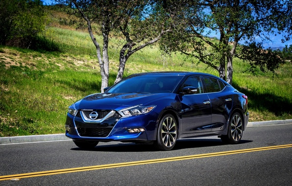 Picture Nissan, blue, Nissan, Maxim, 2015, Maxima