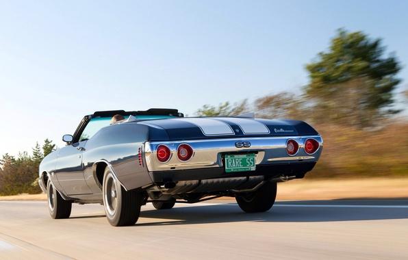 Picture machine, speed, Chevrolet, 454, Chevelle, Convertible, 1972, Malibu, oil CT, Zajac