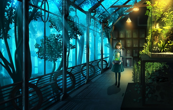 Picture girl, flowers, plants, anime, art, nauimusuka