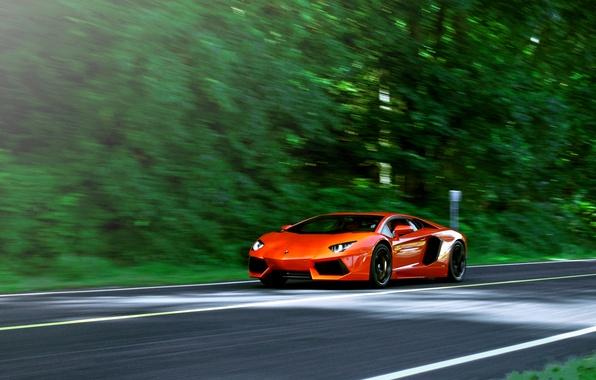 Picture road, trees, orange, speed, blur, lamborghini, orange, aventador, lp700-4, Lamborghini, aventador