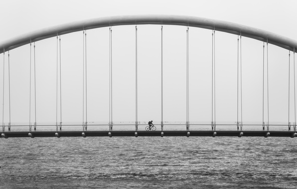 Picture bicycle, ocean, bridge, water, black and white, architecture, suspension, b/w