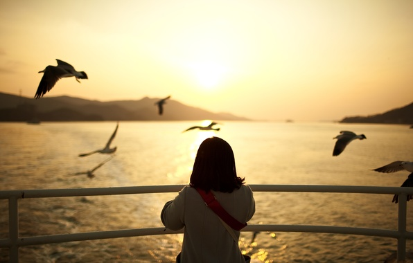 Picture water, sunset, birds, mood, seagulls, the evening, girl, mood