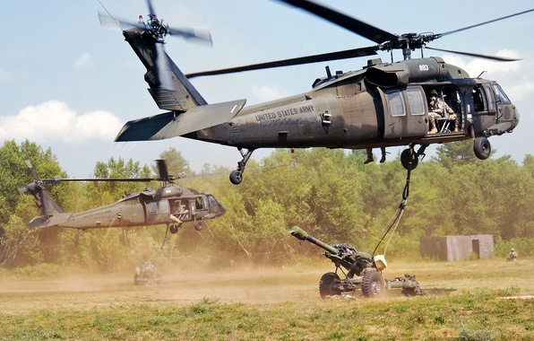 Picture New York, group, exercises, UH-60 Black Hawk, helicopters, howitzer, assault, Fort Drum
