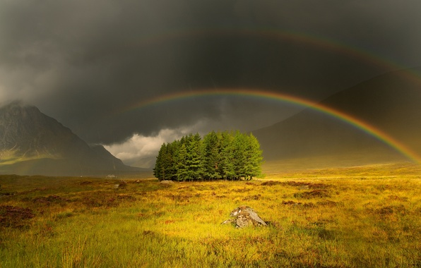 Picture field, trees, mountains, rainbow