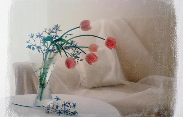 Picture flowers, photo, sofa, treatment, bouquet, tulips, pillow, vase