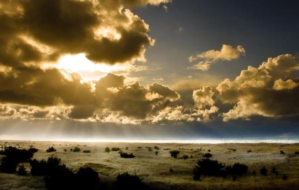 Picture The sky, Horizon, Sun. Rays