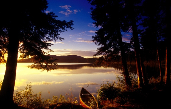 Picture trees, sunset, lake, Boat