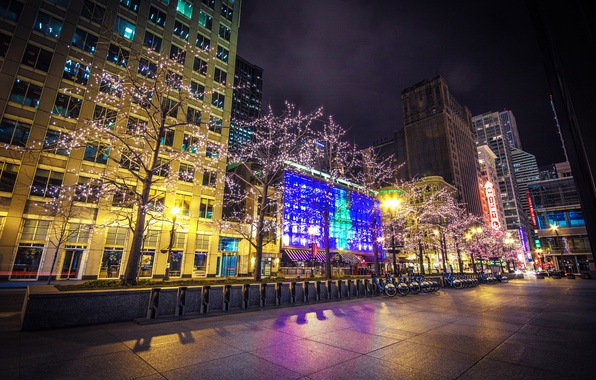Picture trees, night, the city, lights, building, home, skyscrapers, Chicago, Parking, USA, USA, Il, garland, Chicago, …