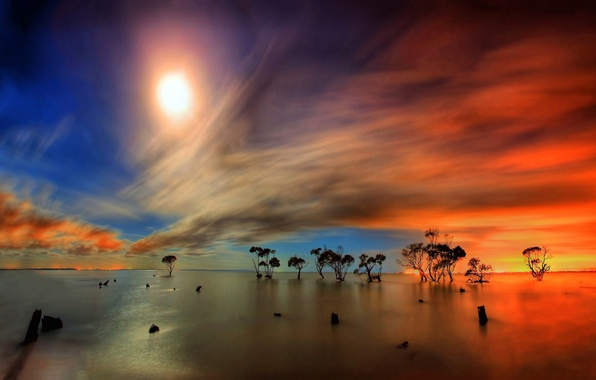 Picture WATER, HORIZON, The SKY, The SUN, CLOUDS, REFLECTION, SURFACE, LIGHT, TREES, RAYS, DAL, SURFACE