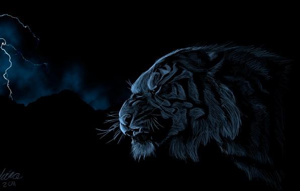 Picture tiger, lightning, predator, head, art