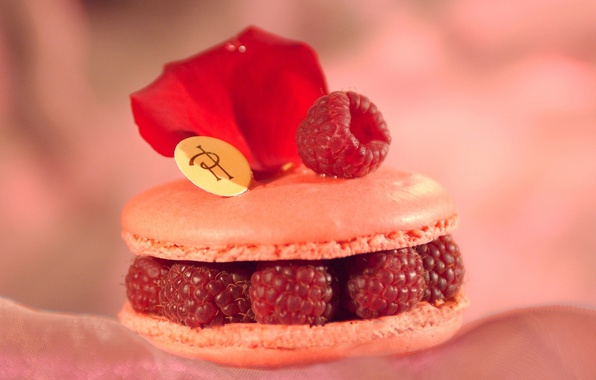 Picture raspberry, background, Wallpaper, rose, food, cookies, petal, berry, cake, sweet, filling
