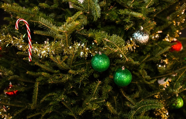 Picture winter, balls, branches, toys, tree, spruce, New Year, green, Christmas, tree, tinsel, Christmas, holidays, New ...