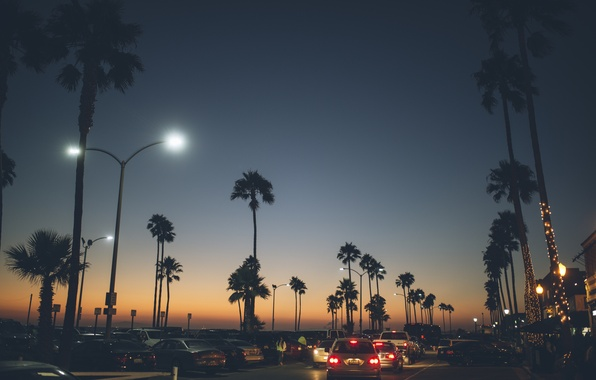 Picture road, machine, the city, palm trees, the evening, Balboa Peninsula, Newport Beach