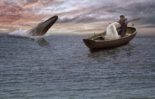 Picture the ocean, boat, the situation, boy, kit, polar bear