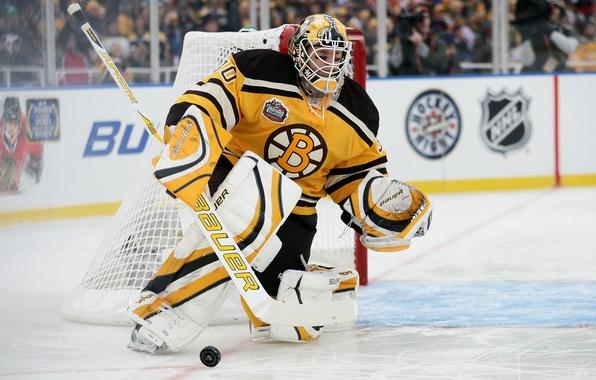 Picture hockey, NHL, bruins, hockey, boston, tim, nhl, goalkeeper, thomas