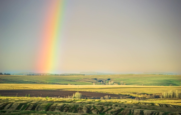 Picture summer, the sky, light, trees, nature, the steppe, field, beauty, rainbow, Tomorrow dorffer