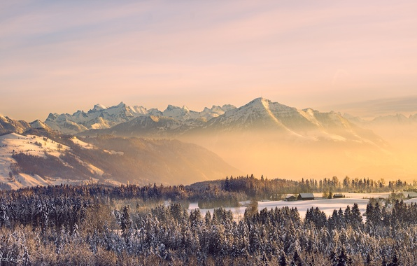 Picture winter, forest, the sky, the sun, snow, mountains, nature, fog, home