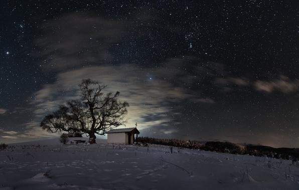 Picture winter, field, the sky, stars, snow, night, tree, chapel