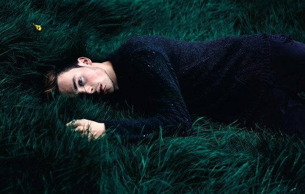 Picture grass, guy, sweater