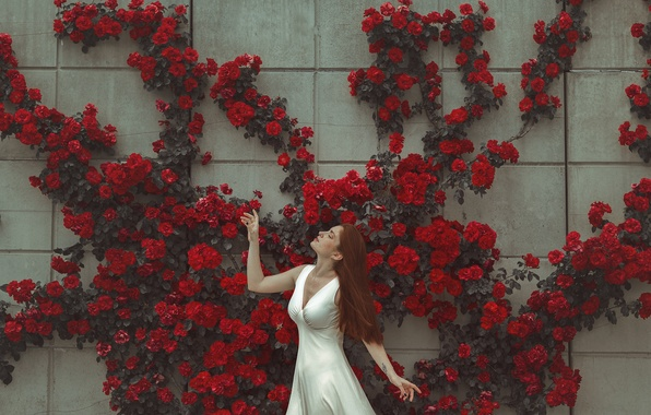 Picture girl, flowers, face, pose, wall, dress