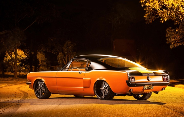 Picture Mustang, Ford, 1965, Fastback