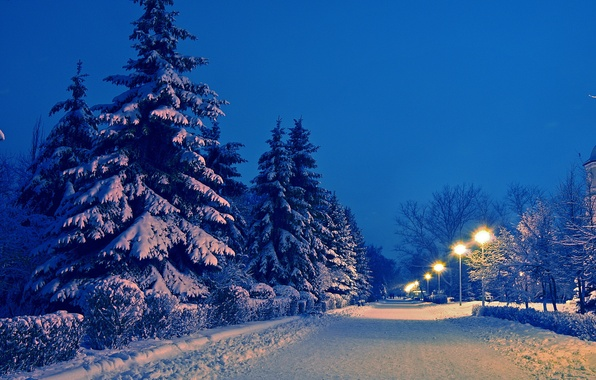 Picture winter, road, snow, landscape, Park, the evening, ate, lights, alley