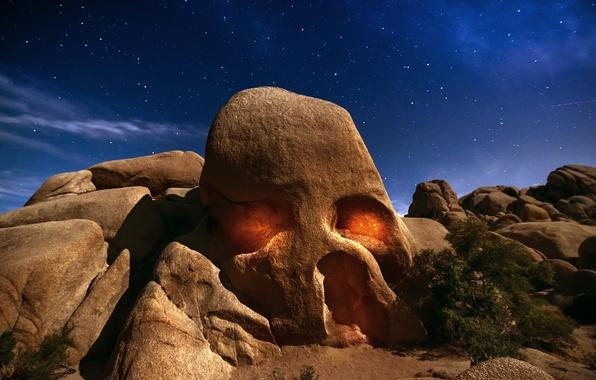 Picture the sky, stars, light, night, rock, desert, Skull, CA, USA, the bushes, Joshua tree, state