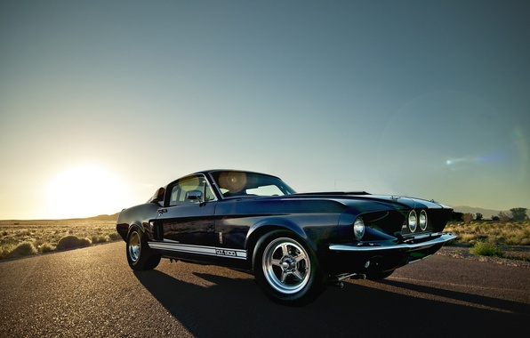 Picture the sun, rays, desert, Mustang, Ford, Shelby, Mustang, gt 500, muscle car, Ford, Shelby, Muscle ...