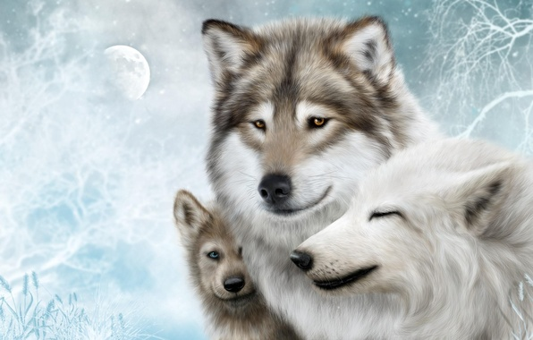 Photo wallpaper Wolf, Wolf, pack, wolves, family, moon, the moon, wolves, white, background, snow, snow, family